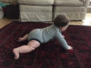 8.5 months and almost crawling!