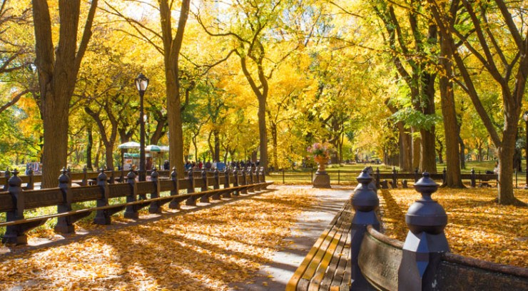 Famous Park in NYC