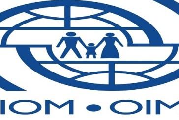 2 Job Positions at International Organization for Migration (IOM): (Deadline 20 October 2021)