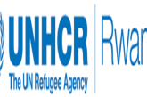 2 Job Positions at United Nations High Commissioner for Refugees (UNHCR): (Deadline 1 October 2021)