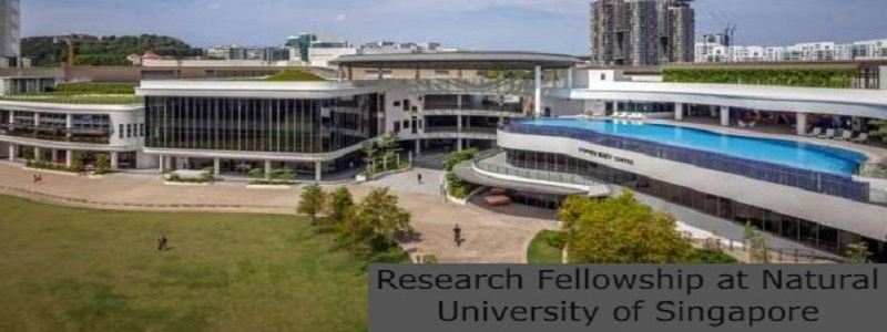 Research Fellowship at National University of Singapore: (Deadline 31 July 2021)