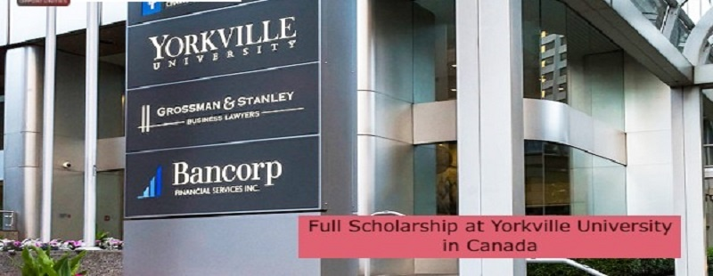 Full Scholarship at Yorkville University in Canada: (Deadline 11 November 2021)