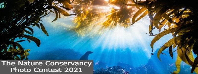 The Nature Conservancy Photo Contest 2021: (Deadline 31 August 2021)