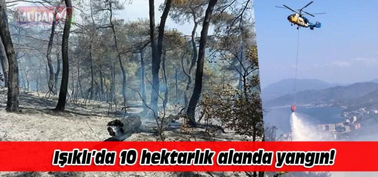Işıklı'da 10 hektarlık çamlık alanda yangın!