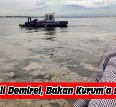 CHP'li Demirel'den Bakan Kurum'a 'salya' mektubu