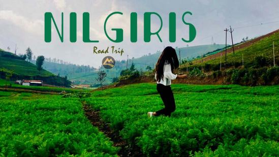 Nilgiris Road Trip