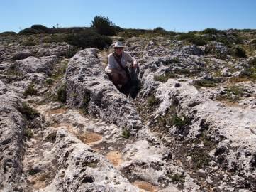 Cart Ruts Muddy Archaeologist Gillian Hovell