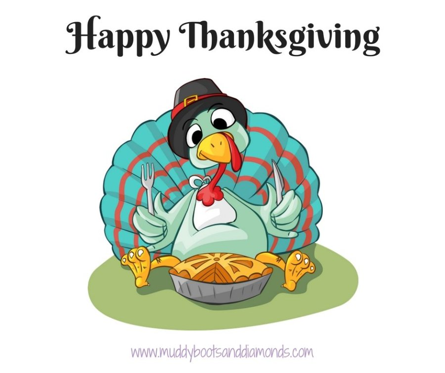 Happy Thanksgiving Turkey 2016 via www.muddybootsanddiamonds.com