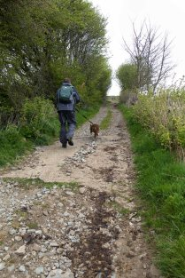 The start of the bridleway. It starts off quite steep but does get easier as we climb higher