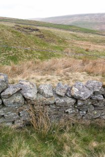 ...this is where the Public Right of Way crosses the boundary wall. No stile, but it is easy to climb over