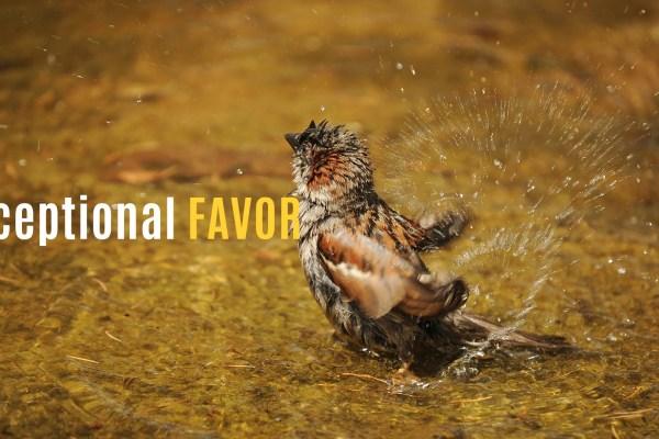 excceptional favor
