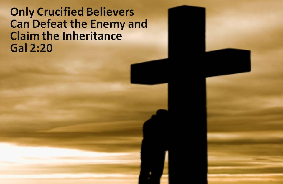 Victory Belongs to the Crucified