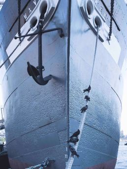 anchor hanging from a ship