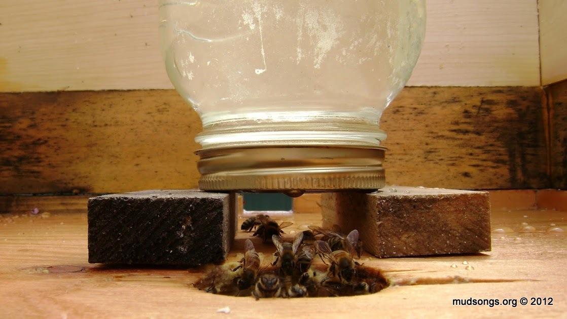 HONEYBEE FEEDER JAR CAPS
