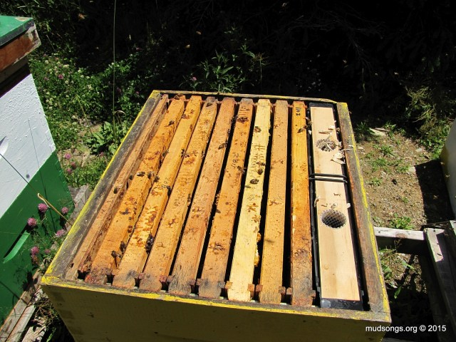 A second hive body full of drawn comb, plus a feeder. (August 5, 2015.)