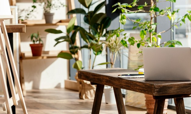 10 ideas para que tu casa respire calma