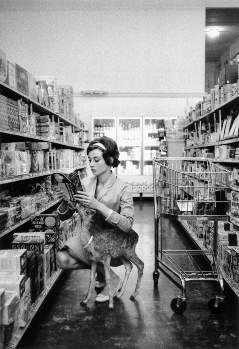 Audrey Hepburn, autor Bob Willoughby, izvor: monoscope.com