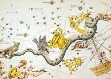 constellation-argo-navis