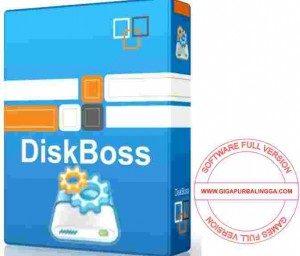 diskboss-ultimate-full-crack-300x256-7699561