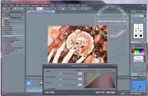 mediachance-photo-brush-full1-1-300x195-5142353