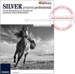 franzis-silver-projects-professional-full-300x295-7889175