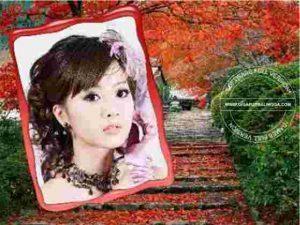 photoshine-full1-300x225-4368215