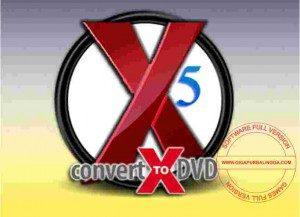 vso-convertxtodvd-full-300x217-3726072