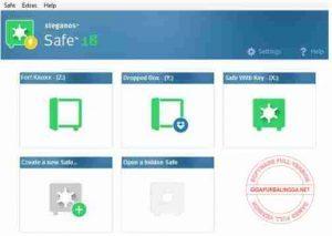 steganos-safe-full-version-300x213-4037497