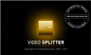 solveigmm-video-splitter-5-0-1505-19-business-edition-full-serial1-300x183-7048687