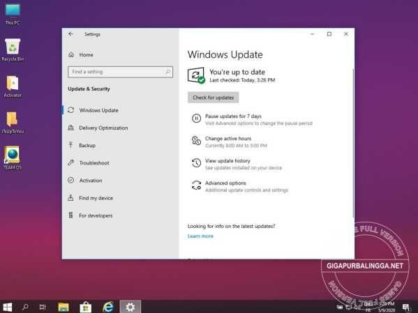 windows-10-lite-x862-3297336