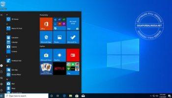 windows-10-pro-20h11-7481392
