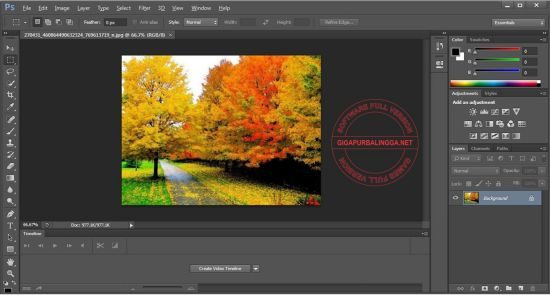 adobe-photoshop-2020-v21-0-3-x64-final-activated1-9540665