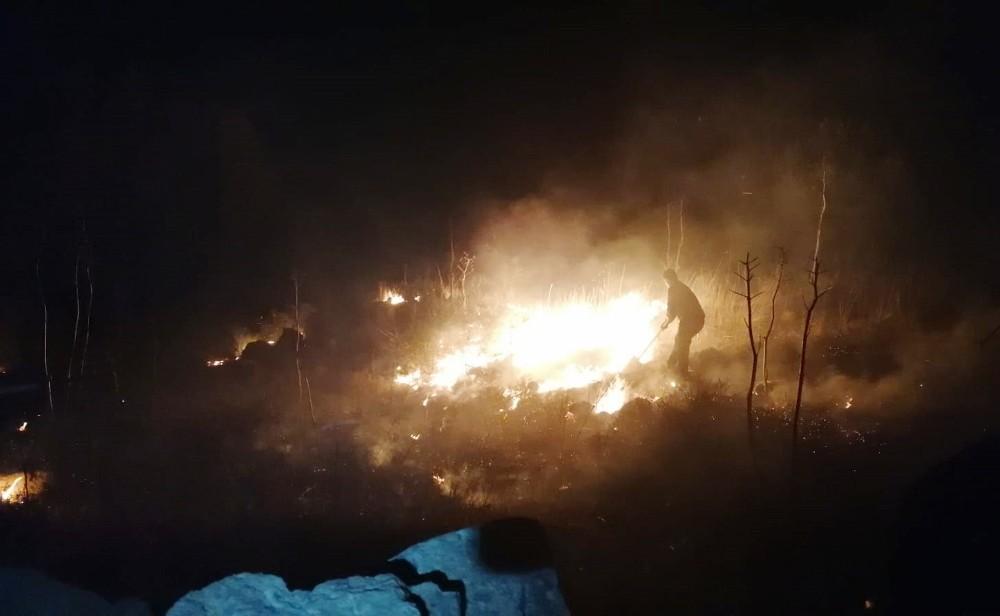 Bodrum'da otluk yangın