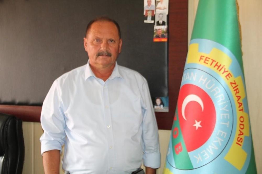Ziraat Odası Başkanı Karayiğit'ten Tarım Sigortası uyarısı