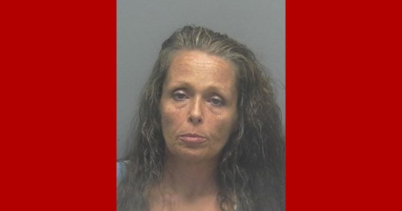JAYNANNE SIMMS, Lee County