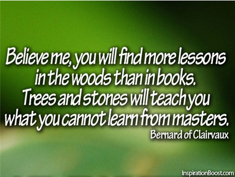 Inspiring Quotes about lessons from nature