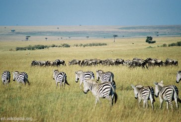 Africa Top Tourist Attractions