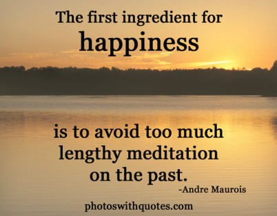happiness-quote-6l