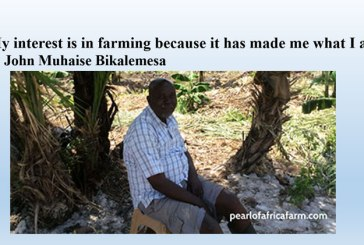 5 qualifications for a successful farmer