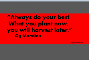 Plant what you will harvest