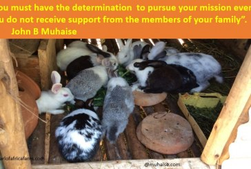 Determination to pursue your mission