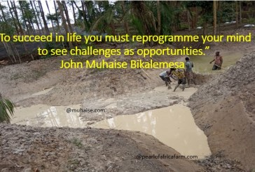 Reprogram your mind to succeed in life