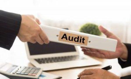 Auditor tələb olunur