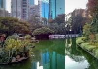Kolam dengan background gedung-gedung bertingkat