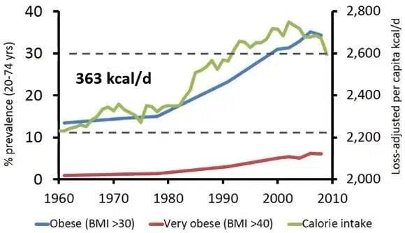 12. Incremento del consumo calórico
