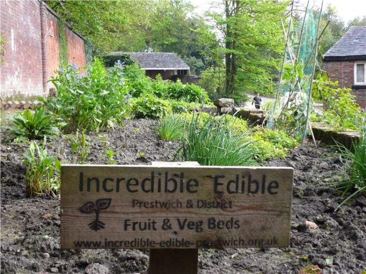 http://www.incredible-edible-todmorden.co.uk/