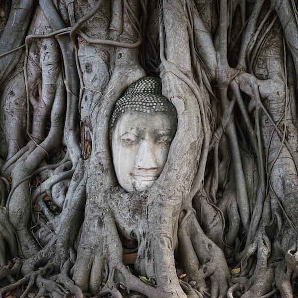 Ayutthaya & Bangkok, deel I