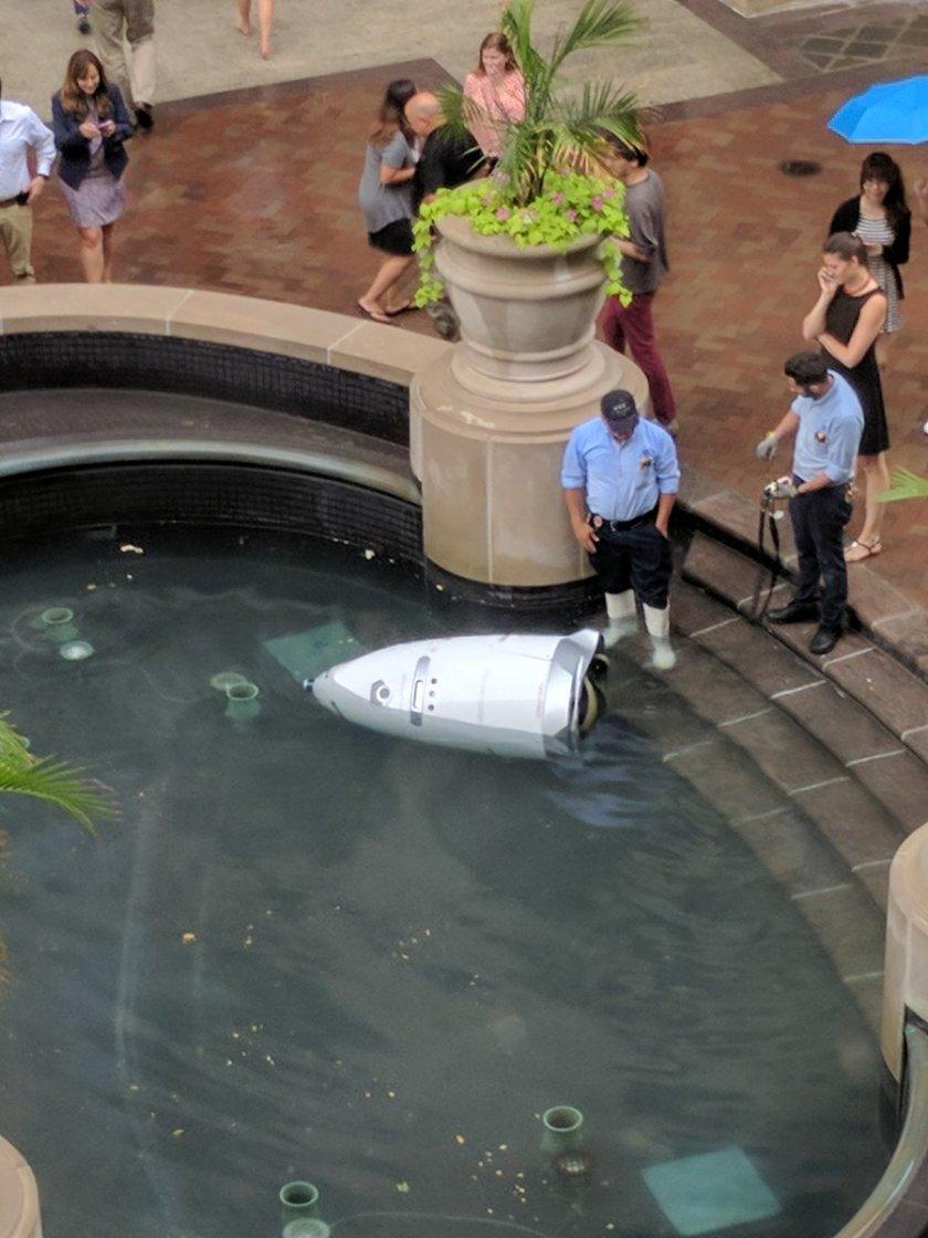 robo-suicida.jpg