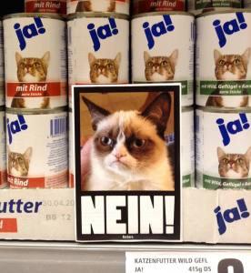 Plakative Straßenkunst. Auch Grumpy Cat hat ein eigenes Plakat bekommen.
