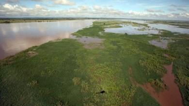 """Photo of Primeira """"Pátria"""" do Homem moderno situou-se ao Sul do Rio Zambeze"""